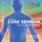 FSM Core Pain and Injury Video Training 2020