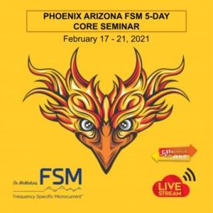 February 5 Day Live Stream