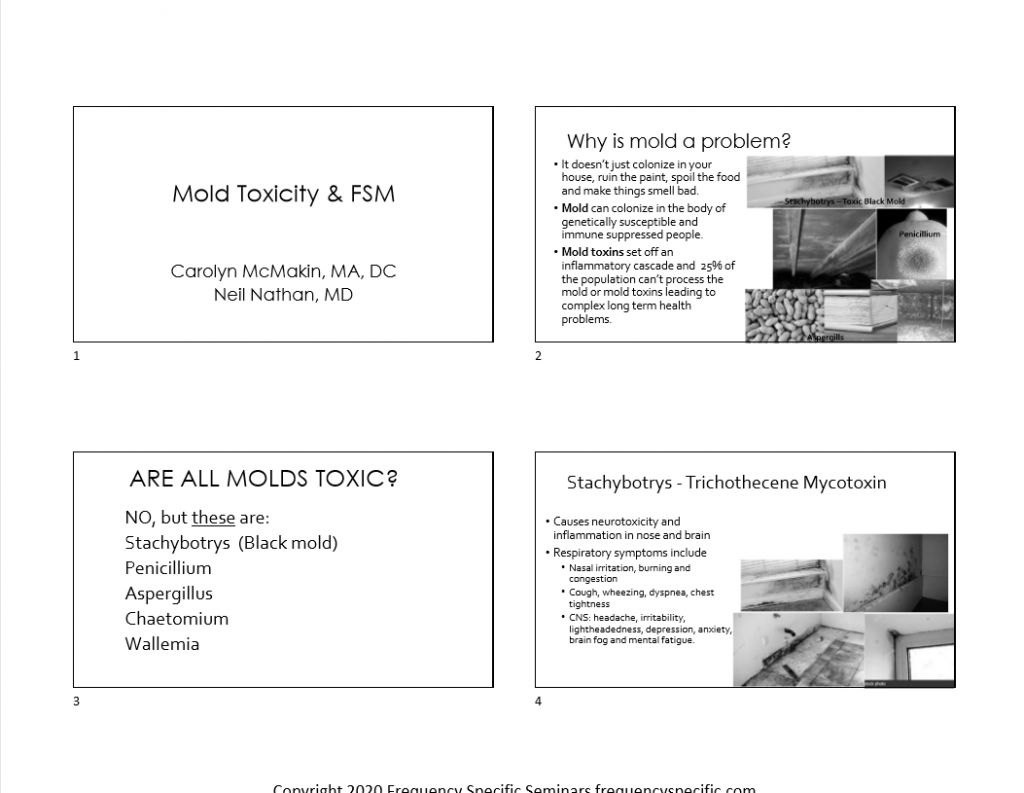 Mold Handout Cover