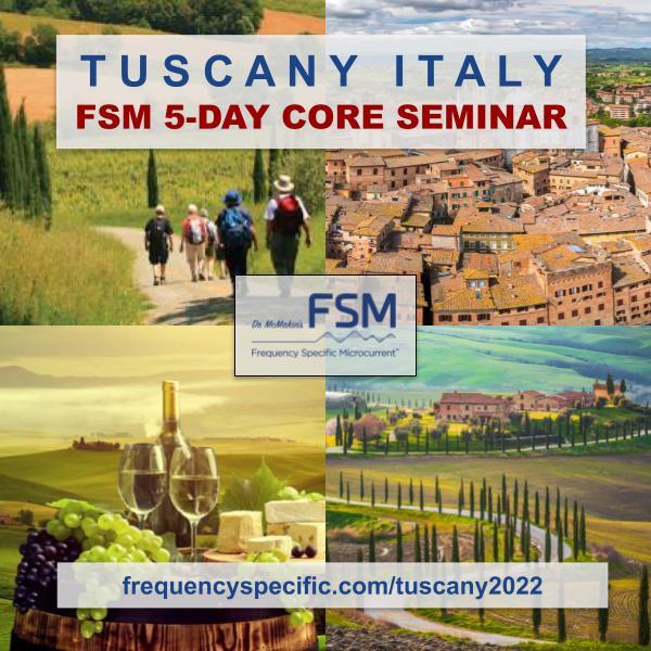 2022 Tuscany Italy Full 5-Day Live FSM Core Seminar